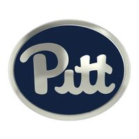 Pitt Enameled Bead in Color