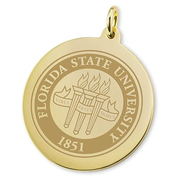 Florida State 14K Gold Charm - Image 2