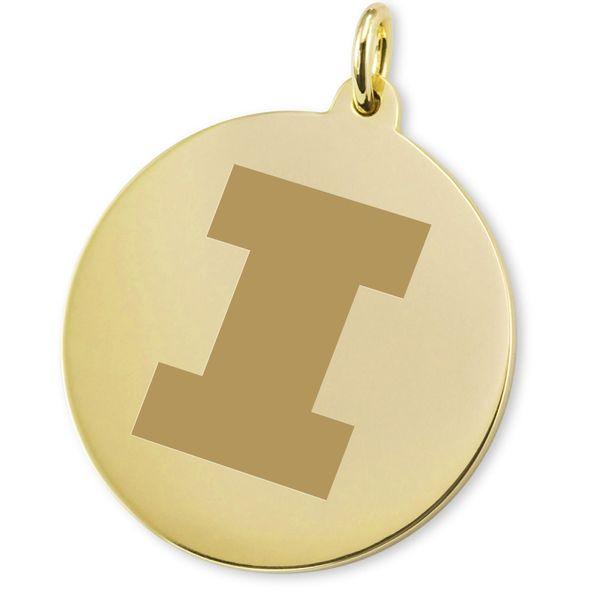 University of Illinois 18K Gold Charm - Image 2