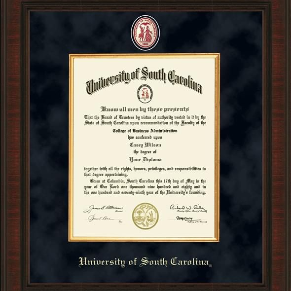 South Carolina Excelsior Frame - Image 2