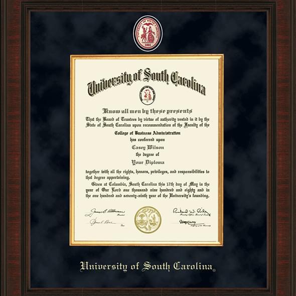 South Carolina Excelsior Frame - Image 2