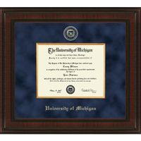 Michigan Excelsior Bachelor/Masters Diploma Frame