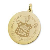 Trinity College 18K Gold Charm