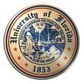 Florida Excelsior Frame - Image 3