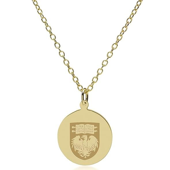 Chicago 14K Gold Pendant & Chain - Image 2