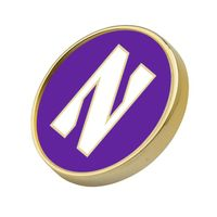 Northwestern Lapel Pin