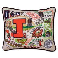 Illinois Embroidered Pillow