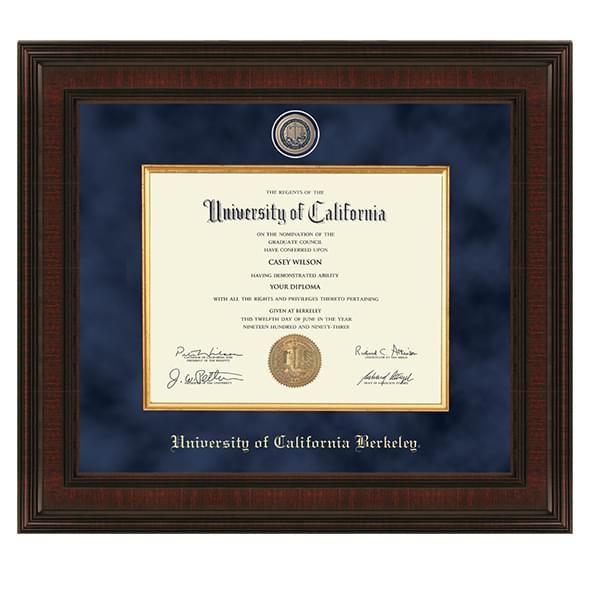 Berkeley Excelsior Frame - Image 1