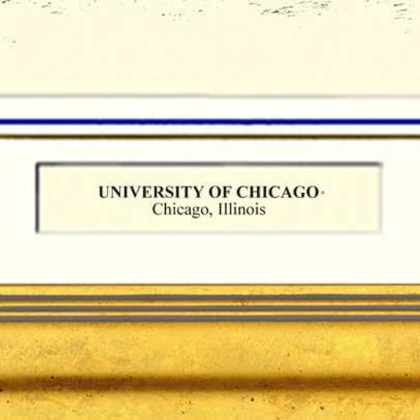 Framed Pen and Ink University of Chicago Print - Image 2