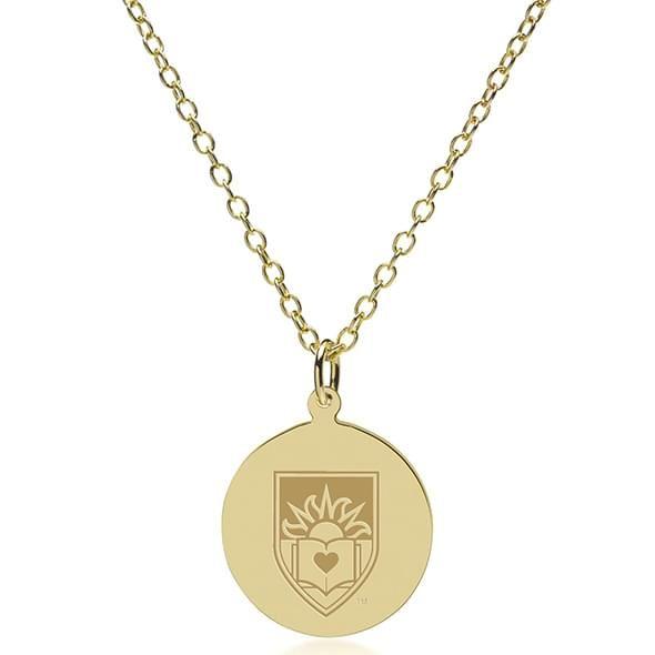 Lehigh 14K Gold Pendant & Chain - Image 2