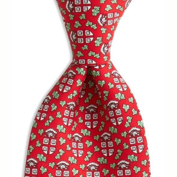Brown University Vineyard Vine tie in Red - Image 2