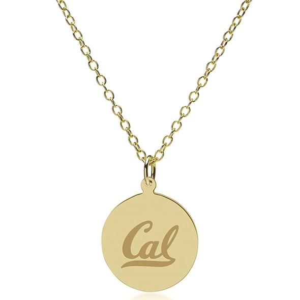 Berkeley 14K Gold Pendant & Chain - Image 2