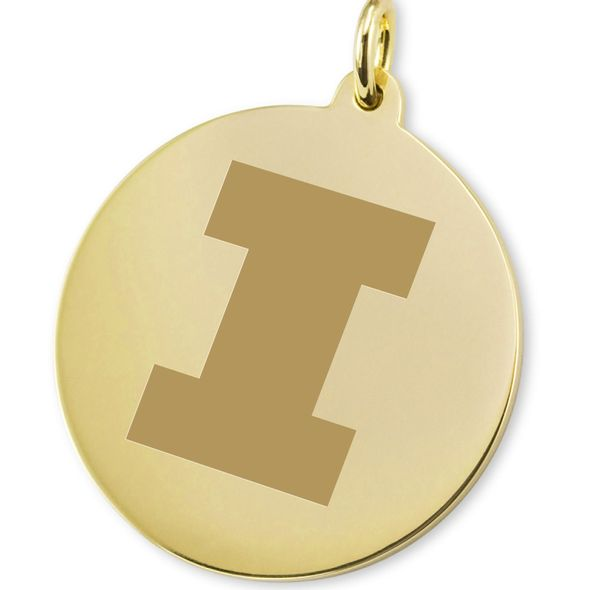 Illinois 14K Gold Charm - Image 2