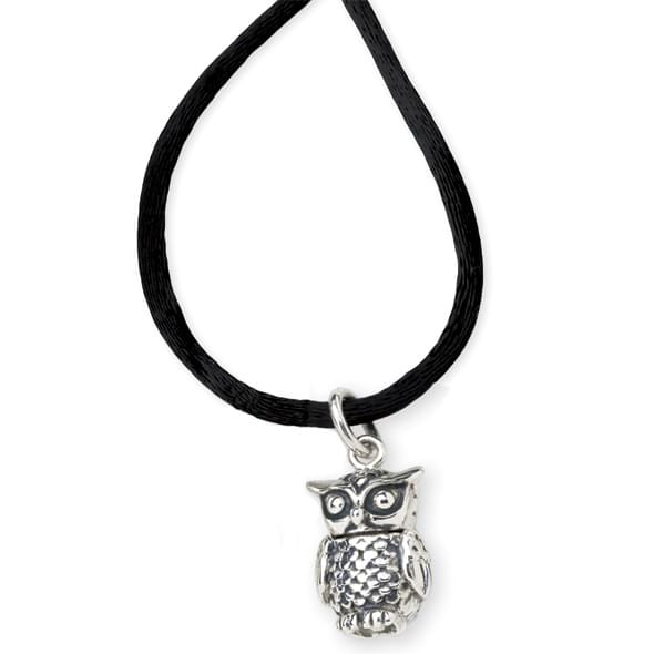 Chi Omega Satin Necklace with Sterling Silver Owl Charm - Image 2